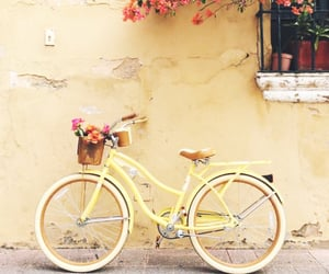 aesthetic, bicycle, and spring image