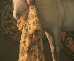 dior, aesthetic, and horse image