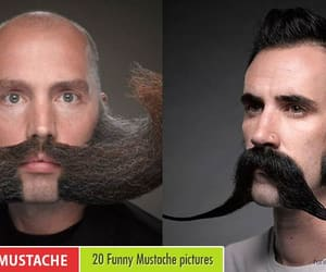 funny, funny mustache, and funny pictures image