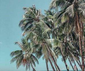 aesthetic, beach, and holiday image