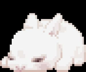 pixel, png, and transparent image