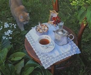 cat, cottagecore, and aesthetic image