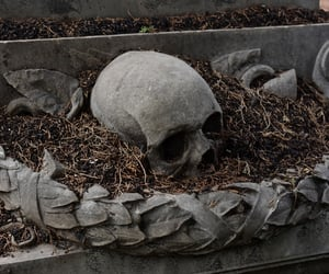 gothic, skull, and cemetery image