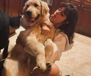 dog, tarzan, and camila cabello image