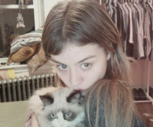 allison harvard, cat, and girl image