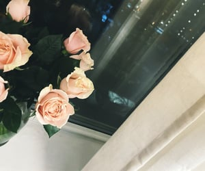 flowers, inspo, and luxury image