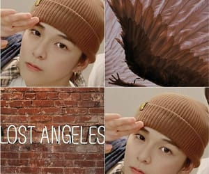 aesthetic, brown, and wings image
