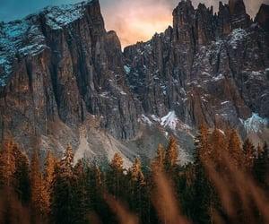 blue sky, forest, and landscape image