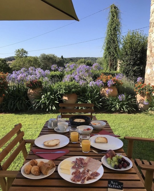 food, garden, and table image
