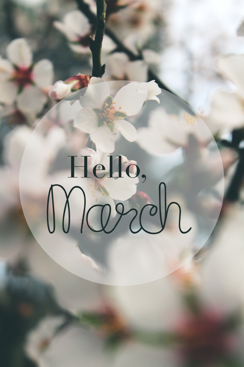 article, quotes, and spring image