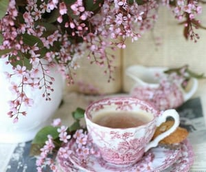 soft pink, spring, and tea image