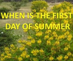 first day of summer, longest day of the year, and first day of summer 2021 image