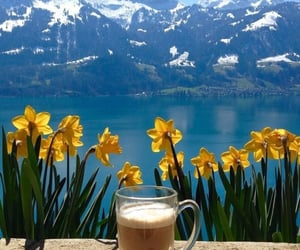 coffee, drink, and mountains image