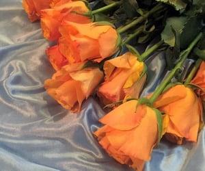 aesthetics, beautiful, and bouquet image