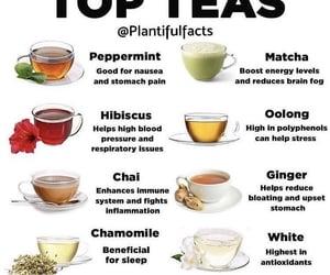 drink, tea, and matcha image