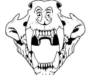 skull, skulls, and tiger image