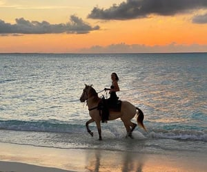 kendall jenner, beach, and horse image