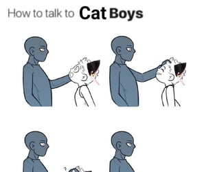 aesthetic, archive, and catgirls image