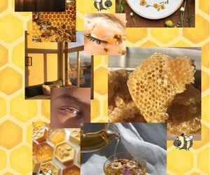honey, mood board, and yellow image