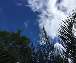 inspiration, nature, and sky image