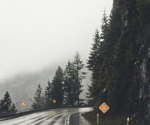 rain, nature, and road image
