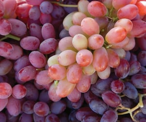 fruit and grape image