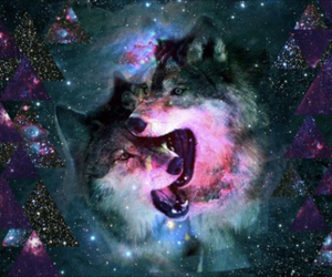 hipster and wolves image