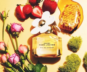 fragrance, marc jacobs, and perfume image