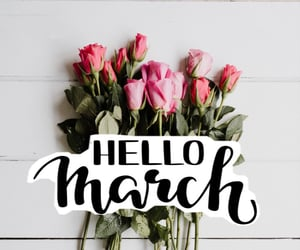 aesthetic, flowers, and hello image