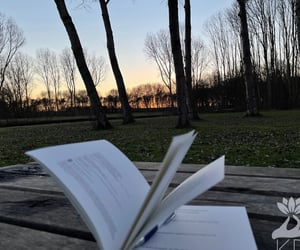 book, Paper, and sunset image