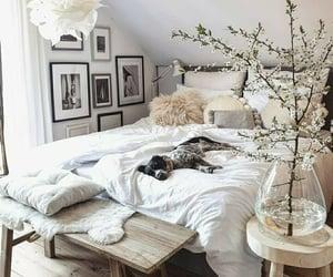 bedroom and decoracion image