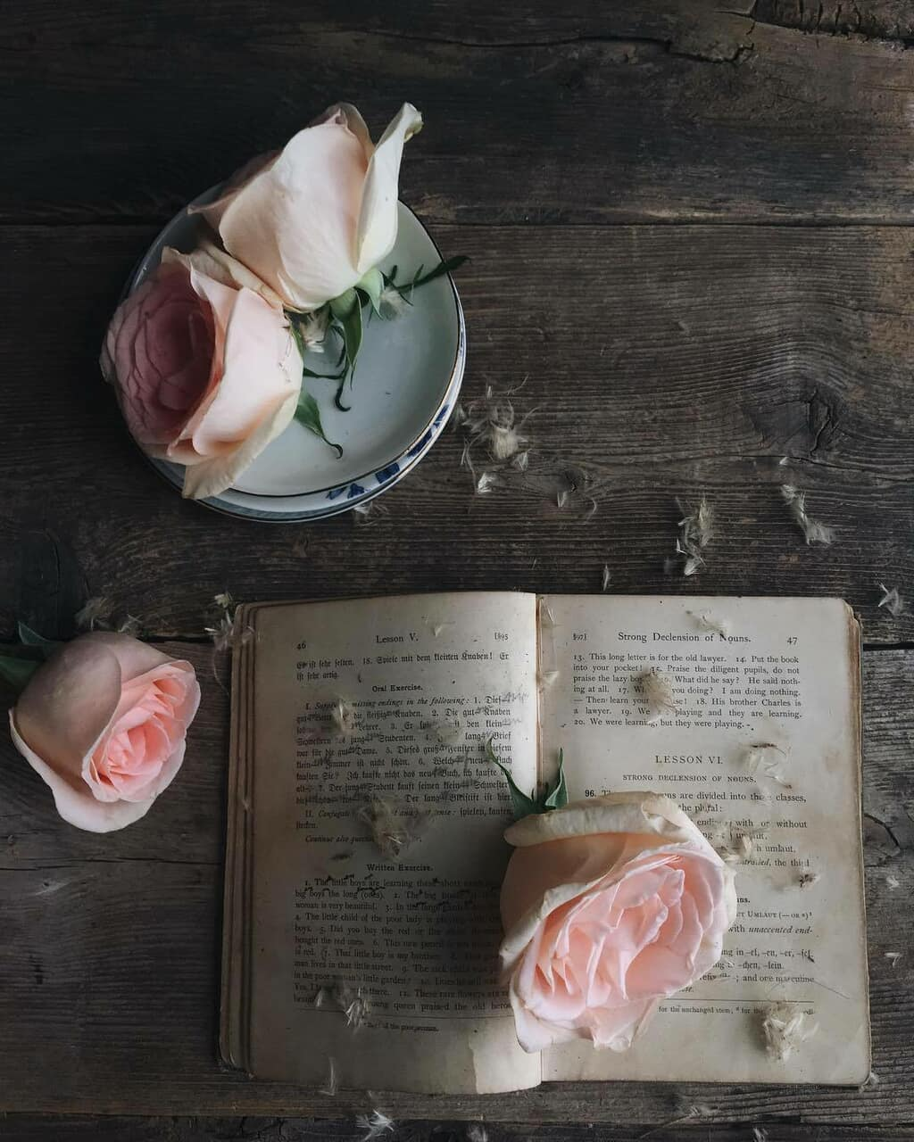 rose, book, and floral image
