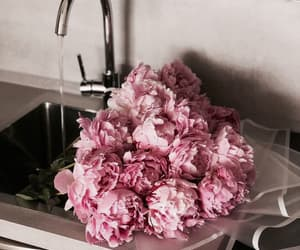 aesthetic, aesthetics, and bouquet image