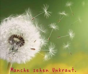schicksal, wunsche, and träume image
