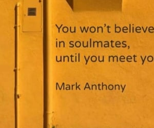in love, quotes, and soulmates image