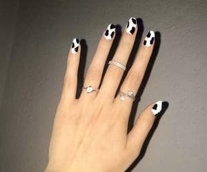 aesthetic, nailpolish, and nails image