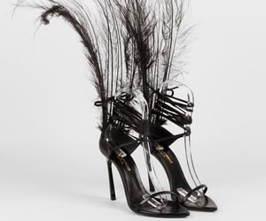 high heels, feather, and shoes image