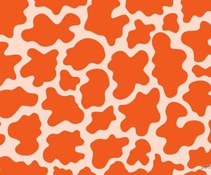 animal, pattern, and aesthetic image