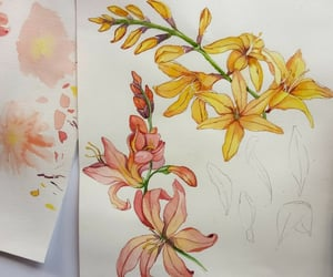 art, watercolor flowers, and drawing image