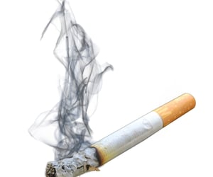 cigarette and png image
