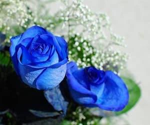 1, blue, and dark image