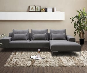 bed, furniture, and sofa image