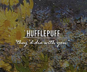 yellow, harry potter, and hufflepuff image