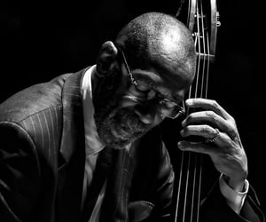 b&w, double bass, and love image