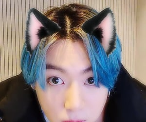 blue hair, catboy, and bts image