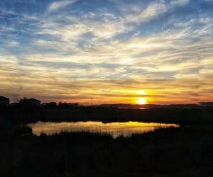 incredible, marsh, and scenery image