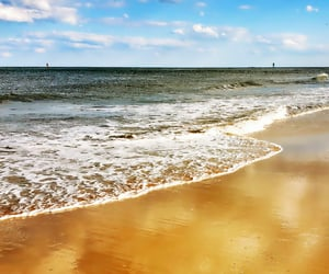 coast, seashore, and ocean waves image