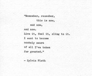 life, sylvia plath, and words image