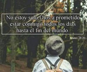 amor, promesas, and cuidar image