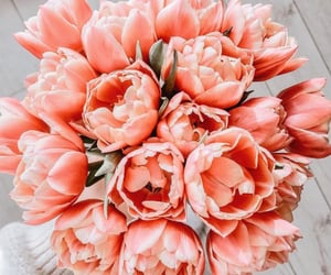 bouquet, flowers, and peach image